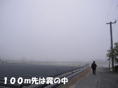 20110507-05.jpg