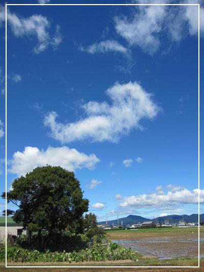 20110905-01.jpg